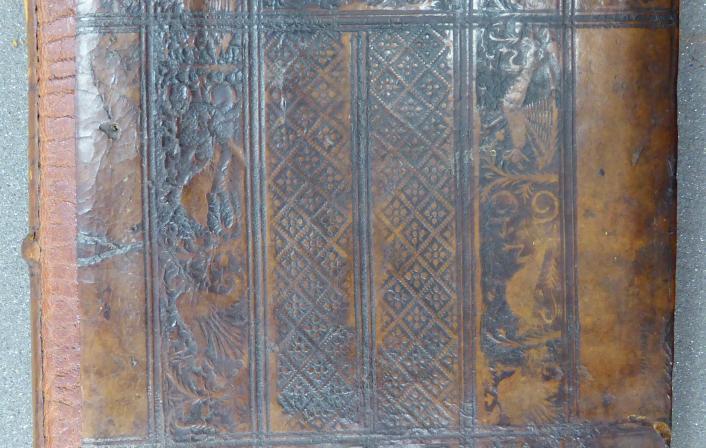 Colchester Harsnett H.e.49 upper board