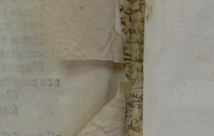 Colchester Harsnett H.f.28 ii