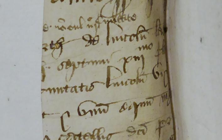 Colchester Harsnett H.f.4 i detail
