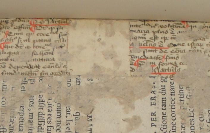 Colchester Harsnett H.f.8 ii