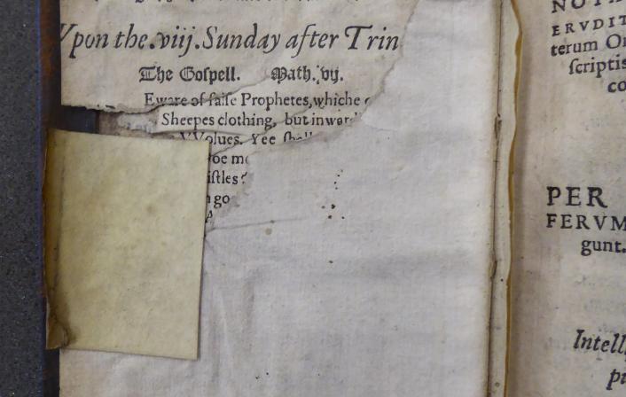 Colchester Harsnett I.a.20 i