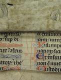 Colchester Harsnett H.d.22 fragment